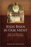 Jesus Risen in Our Midst: Essays on the Resurrection of Jesus in the Fourth Gospel Paperback – November 22, 2013 by Sandra M. Schneiders