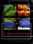The Redwood, v.95 1998-1999