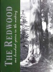 The Redwood, v.100 2003-2004 by Santa Clara University